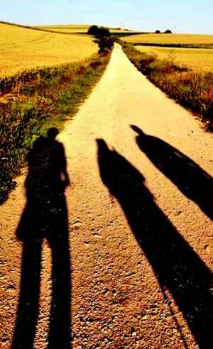 pilgrimage shadows